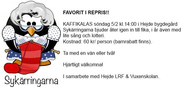 sykarringarna_kaffikalas_2017_v2
