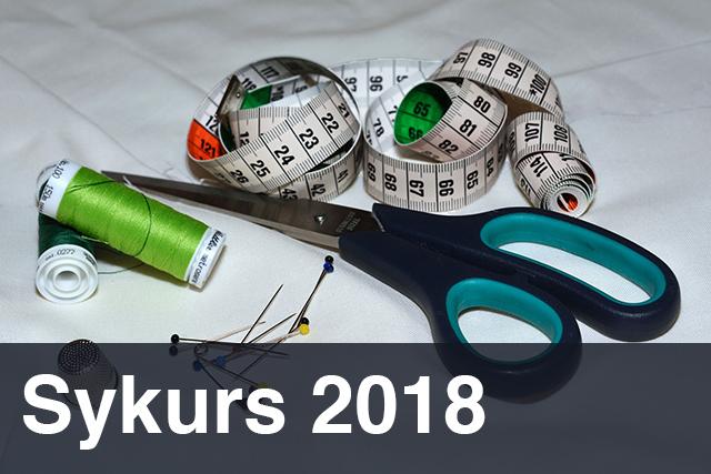 sykurs_2018