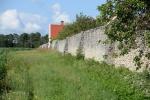 9 Muren vid Tyrvalds.jpg